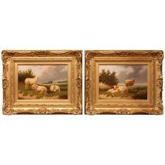 """""""Sheep Grazing"""" Pair of Oil Paintings by Jacob Van Dieghem"""