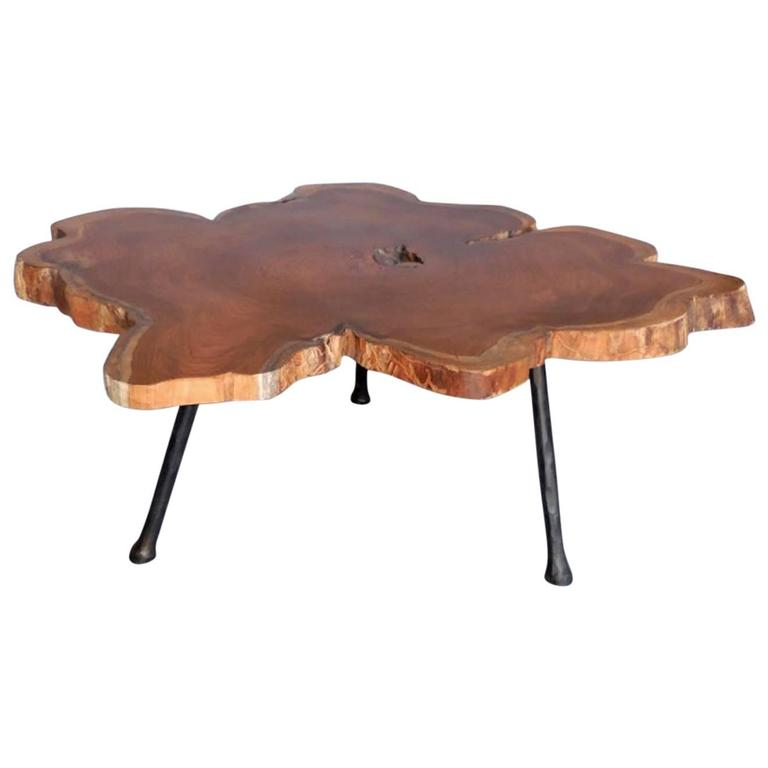 Organic Modern Coffee Table