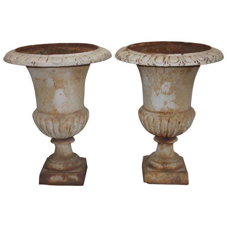 Pair of 19th Century Medicis Urns