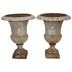 Pair of 19th Century Medicis Urns