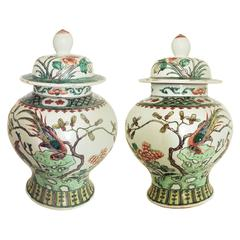 Chinese Export Porcelain Famille Verte Wucai Pair of Jars and Covers