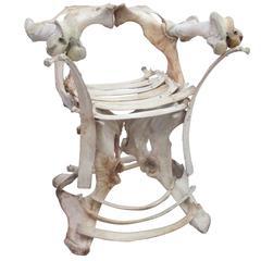 Decorative Sculptural Bone Chair