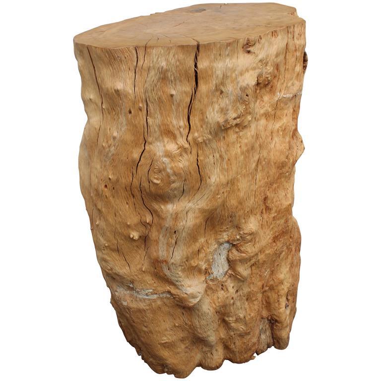 Organic Trunk Pedestal