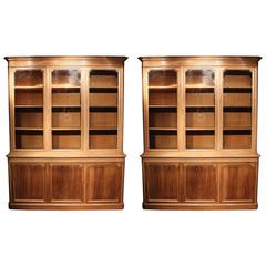 Pair of 19th Century French Bookcases in Bleached Walnut