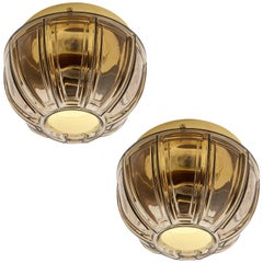 Pair of Limburg Flush Mount Lights or Sconces, Brass and Brown Glass, 1970