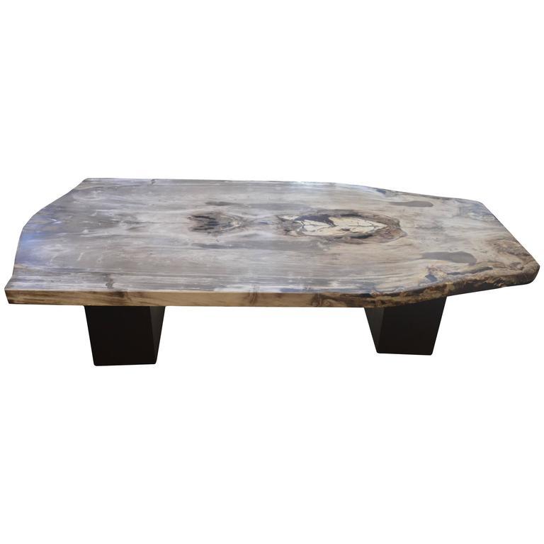 Andrianna Shamaris Petrified Wood Coffee Table