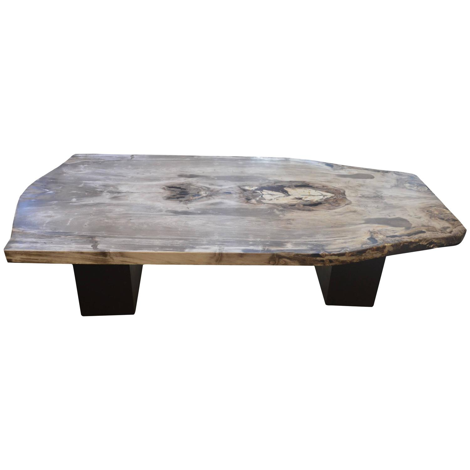 petrified wood coffee table for sale at 1stdibs