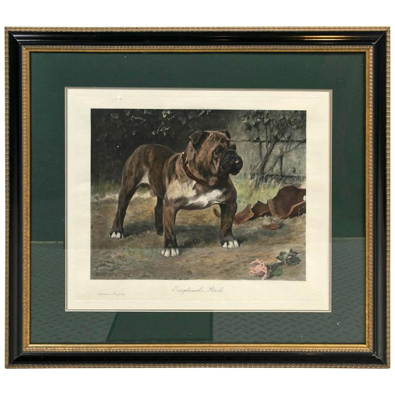 """Arthur Wardle """"England's Pride"""" Hand Colored Print For Sale"""