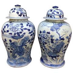 Large Pair of Chinese Blue and White Temple Jars