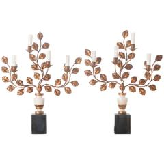 Pair of 19th Century Foliate Sconce Lamps