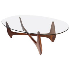 Brazilian Jacaranda 1960s Palacios Coffee Table by Scapinelli