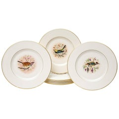 Eight Dessert Plates, Hand-Painted Song Birds by Jan Nosek, Vintage Lenox