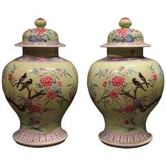 Pair of Bright Green Antique Chinese Vases Decorated with Flowers and Birds