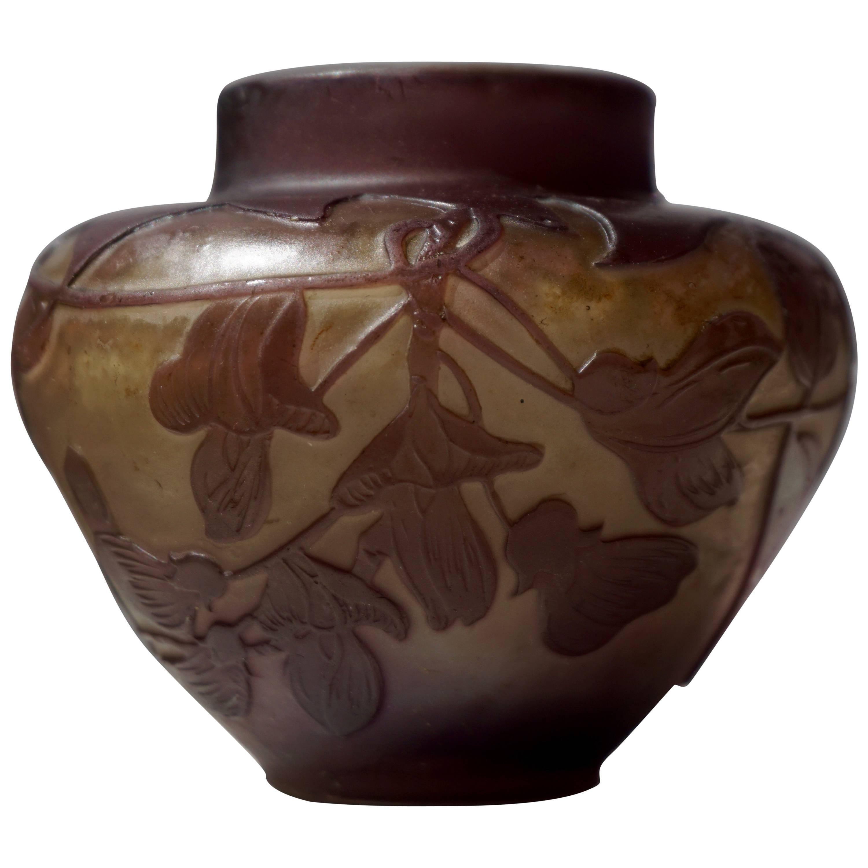 Emile Gallé French Art Nouveau Cameo Glass Vase