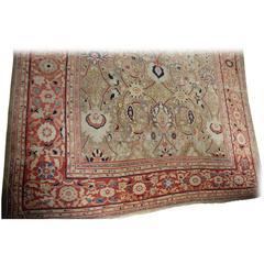 Ziegler Carpet, Late 19th Century