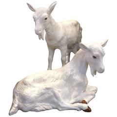 Pair of Porcelain Goats
