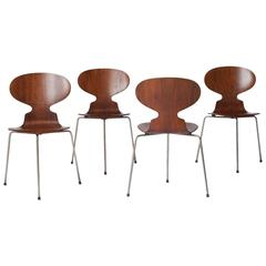 Ant Chairs #3100 by Arne Jacobsen
