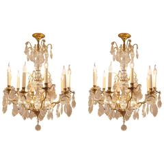 French Pair of Louis XVI Style Gilt Bronze and Chrystal Chandeliers, circa 1920