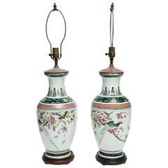 Vintage Chinese Lamps Painted with Parrots
