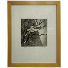 Arthur Tress Original Silver Gelatin Photograph, 1996