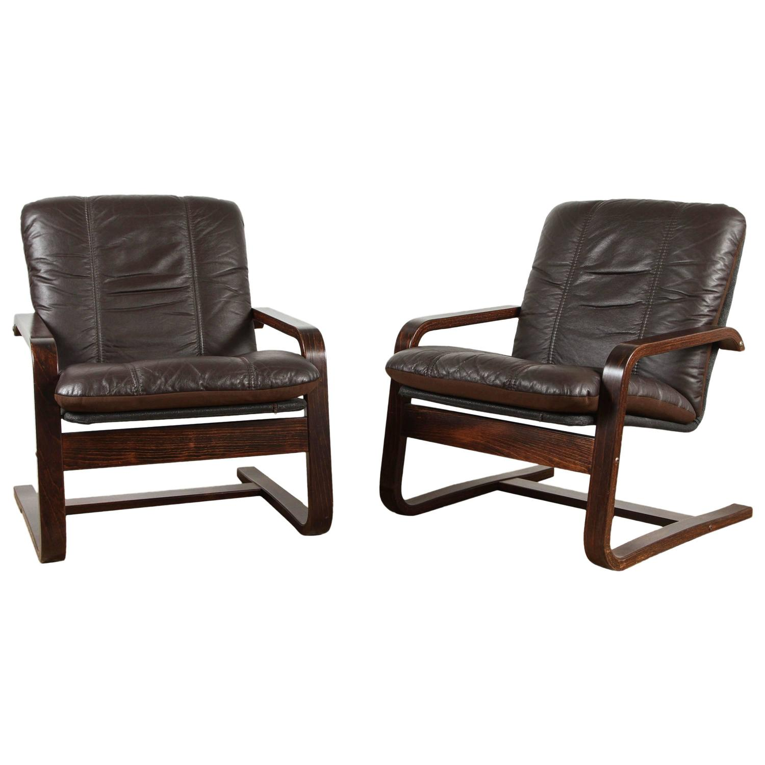 Mid Century Lounge Chairs at 1stdibs