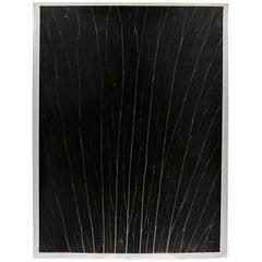 Enrico Garzaro, Flora Photogram Black and White Contemporary Photography