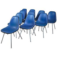 Ten Original Black and Cobalt Blue Eames Shell Chairs for Herman Miller, Signed