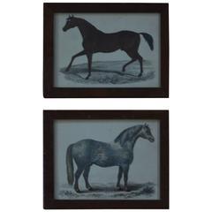 Pair of Original Antique Horse Prints, English, circa 1850