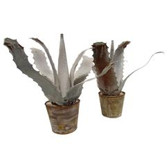 Pair of Tole Aloe Plants