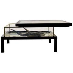 Modernist Romeo Rega Sliding Top Brass Coffee Table