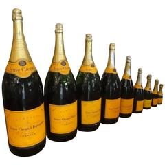 Collection of Nine Champagne Bottles