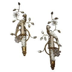 Gilt Metal Sconces with Parrots