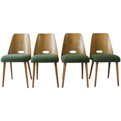 Dining Chairs by TON