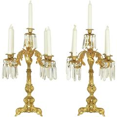 19th Century Pair of Neo-Rococo Style Gilt Bronze crystal glass Candelabras