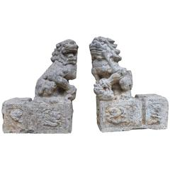 Pair of Grey Stone Carved Foo Lions