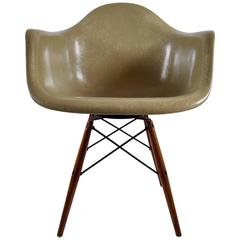Zenith Rope Edge PAW Swivel Chair by Eames for Herman Miller, USA, 1950
