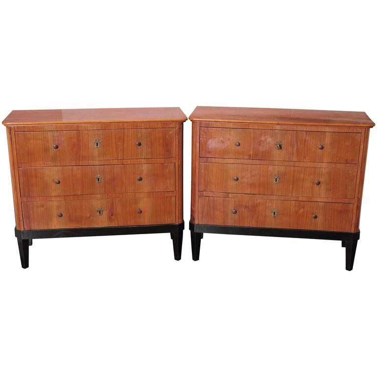 Pair of 19th Century German Biedermeier Commodes