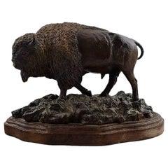 Kim McCall, American Artist, Large Buffalo/Bison in Bronze, Wooden Base