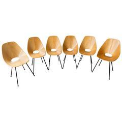 "Set of Six Vittorio Nobili ""Medea"" Chairs, Italy, circa 1955"