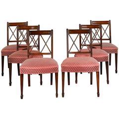18th Century Sheraton Dining Chairs