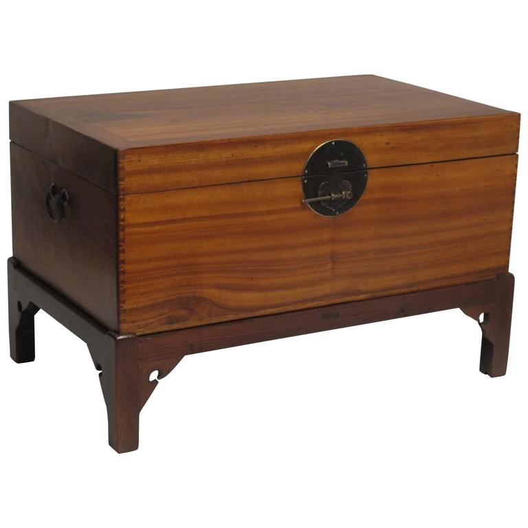 Chinese Camphor Wood Trunk on Stand