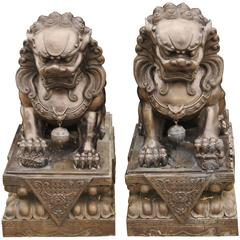 Pair of Extra Large Bronze Chinese Foo Dogs Keiloon Fu Temple Statue, China