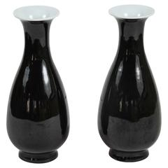 Pair of Chinese Mirror-Black Glazed Vases, circa 1850