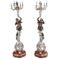 Pair of 19th Century French Patinated and Silvered Bronze Torchères Floor Lamps