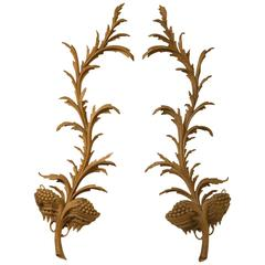 Pair of Carved Limewood George II Style Wall Appliqués