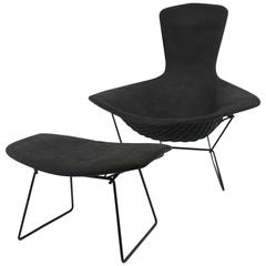 Vintage Bird Chair and Ottoman by Harry Bertoia for Knoll