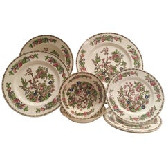 """Antique Staffordshire English Dinnerware """"The India Tree"""" By, Alfred Meakin S/14"""