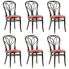 Thonet No.25 Dining Chairs Set of Six, circa 1900 'Re-Upholstery to-Order'