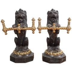Pair of English 19th Century Lion Form Bronze and Brass Fire Tool Holders