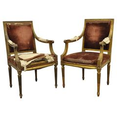 Pair of Gold Giltwood 19th Century French Louis XVI Style Dining Armchairs